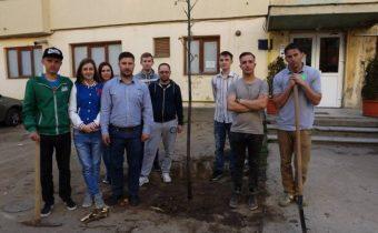Környezetvédelemre intettek a margittai fiatalok